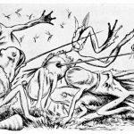 Theodor Kittelsen (1857 – 1914) Krigen Mellom Froskene Og Musene - Illustrations to Batrachomyomachia (Battle of Frogs and Mice) - 1885