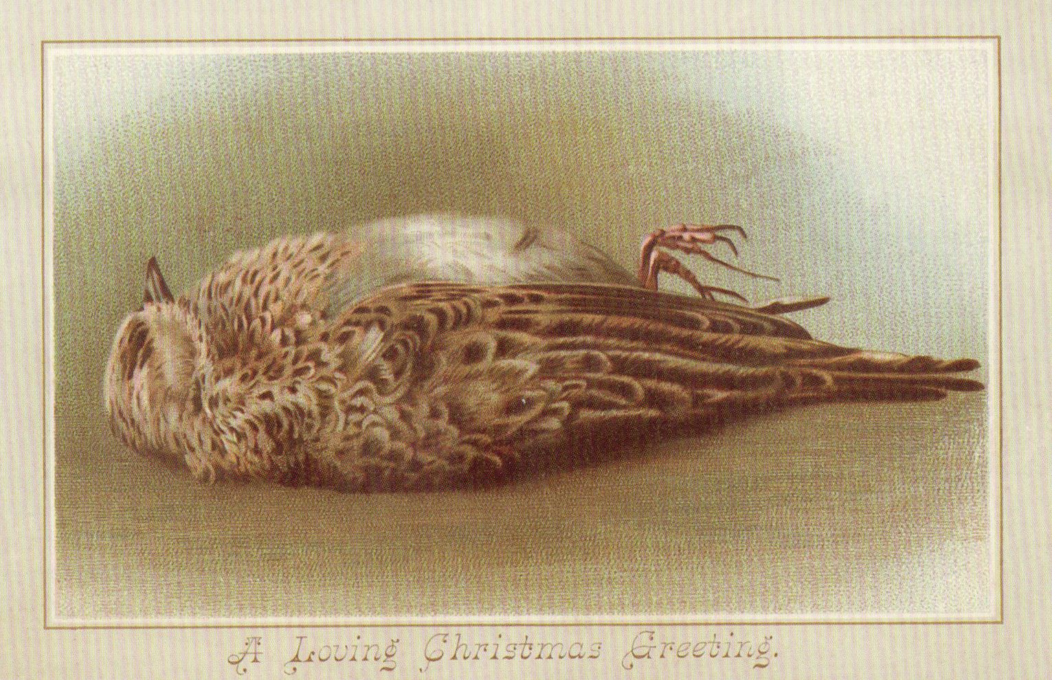 What says love more than a dead bird?