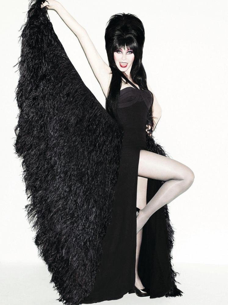 Elvira (photo by Matt Irwin)